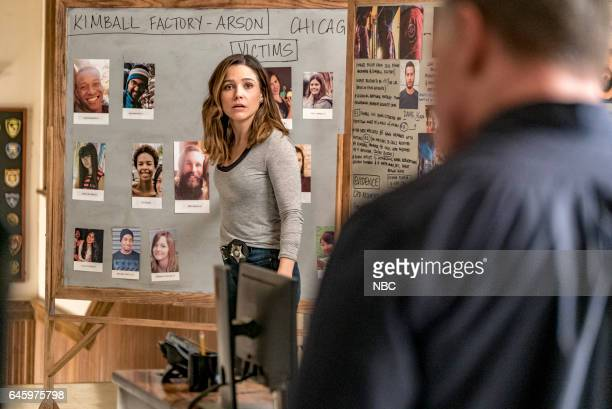 D 'Emotional Proximity' Episode 417 Pictured Sophia Bush as Erin Lindsay