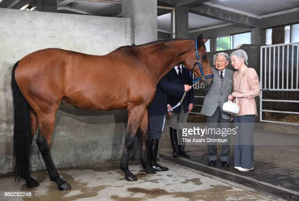 Emperor Akihito and Empress Michiko feed horse 'Kusashin' which is sent to Ise Shrine at the Imperial Palace on April 23, 2018 in Tokyo, Japan.