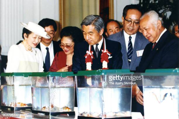 Emperor Akihito and Empress Michiko present Butterfly Koi to Indonesian President Muhammad Suharto and his wife Siti Hartinah during their meeting at...