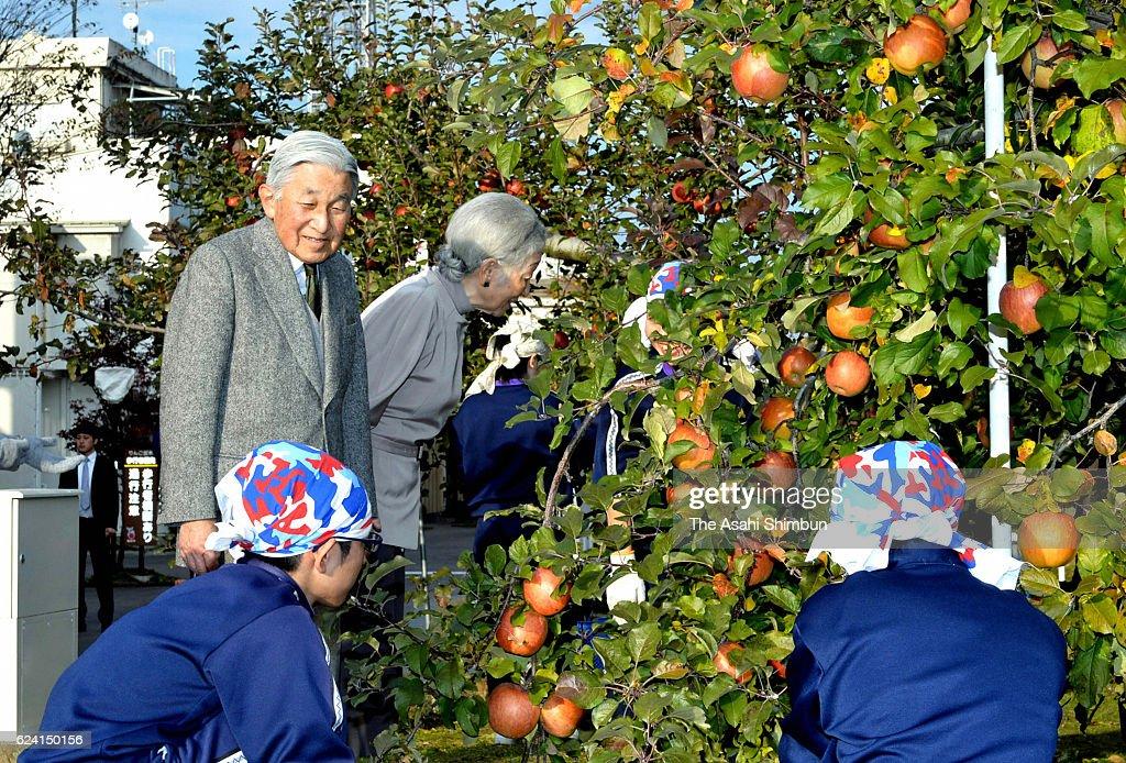 Emperor Akihito and Empress Michiko talk to junior high school students harvesting apples on November 17, 2016 in Iida, Nagano, Japan.