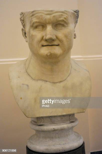 Emperor Vespasian Flavian dyansty Bust c 80 Ad National Archaeological Museum Naples Italy