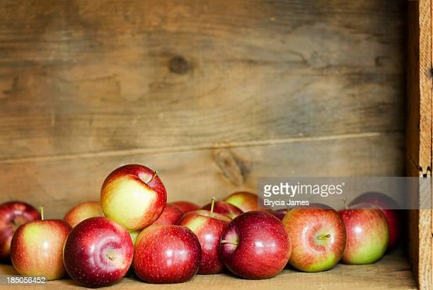 Empire Äpfel in einer Box mit Textfreiraum Horizontal