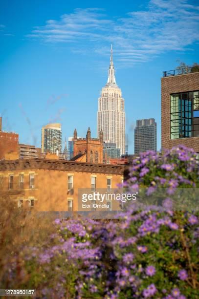 empire state building desde la línea high en chelsea, nueva york - new york state fotografías e imágenes de stock