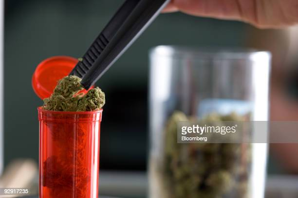 Employee Starr Smith puts a bud of medical marijuana inside a tube for a customer at the Highland Health medical dispensary and wellness center in...