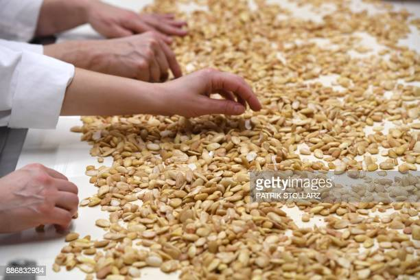Employees carry out quality checks on almonds as they move along a conveyor at the headquarters of the traditional confectionary maker JG Niederegger...