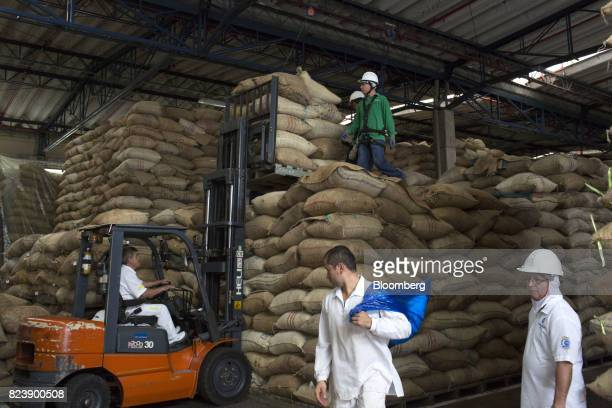 Employees move jute bags of cocoa beans from a storage area at Grupo Nutresa SA Nacional de Chocolate factory in Medellin Colombia on Thursday June 8...