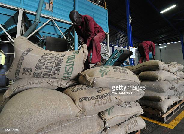 Employees of a cocoa export company pile up cocoa sacks on pallets in a packaging factory in Abidjan's port on October 4 2012 The 20122013...