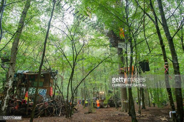 Employees of German energy supplier RWE stand at a camp of environmental activists during evacuation operations in the Hambacher Forest near Kerpen...