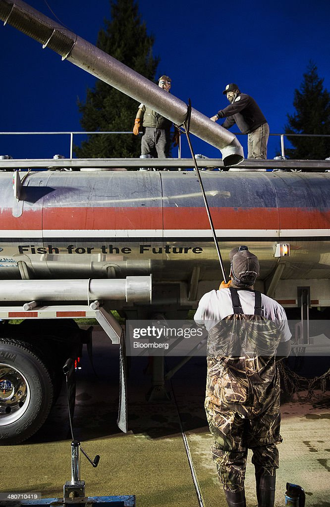 Employees of the California Department of Fish and Wildlife and The U.S. Fish and Wildlife Service load Chinook salmon into a tanker for transport in Anderson, California, U.S., on Tuesday, March 25, 2014. California will begin hauling 30 million young Chinook salmon hundreds of miles toward the Pacific Ocean in tanker trucks to save the fishing industry after a record drought left rivers too low for migration. Photographer: Ken James/Bloomberg via Getty Images
