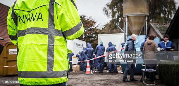 Employees of the Dutch Food Safety Authority research at a poultry farm where avian influenza has been detected in Deurne on October 28 2016 / AFP /...