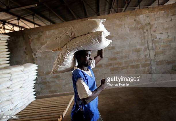 Employees of the World Food Programme WFP carrying sacks of basic foodstuffs at a logistics center as pictured on March 14 2014 in Bangui Central...