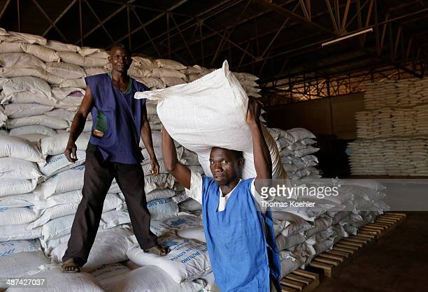 Employees of the World Food Programme WFP loading sacks of basic foodstuffs at a logistics center as pictured on March 14 2014 in Bangui Central...