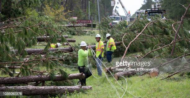Employees of Xylem Tree Experts work to clear downed pine trees and free up utility lines downed by Hurricane Florence along NC 306 near the Cherry...