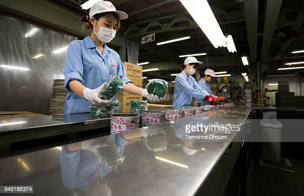Employees put mosquito coils into cans at the Kishu Factory of Dainihon Jochugiku Co Ltd on July 6 2016 in Arita Japan Japanese insect repellent...