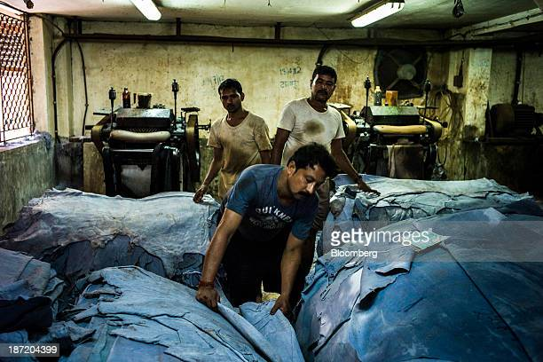 Employees sort different grades of tanned leather skins into piles at the New Horizons Ltd tannery in the Bantala area of Kolkata West Bengal India...