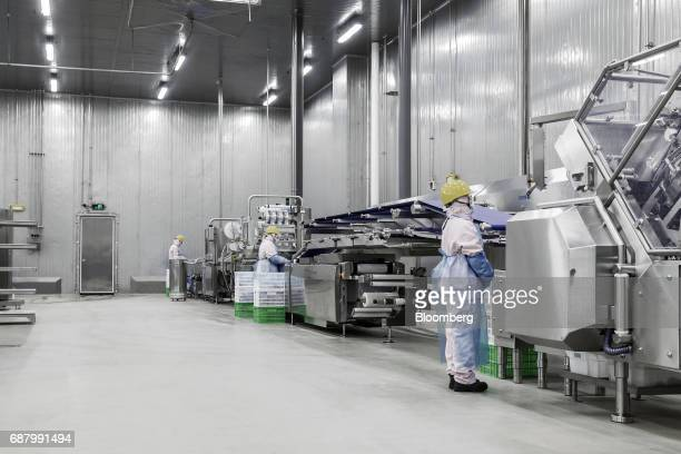 60 Top Pork Processing At A Smithfield Foods Plant Pictures