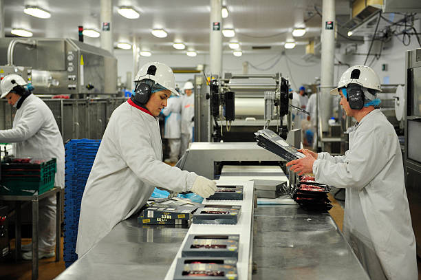 Consumer Goods Processing Plants : Beef processing at an abp foods group meat plant as u s
