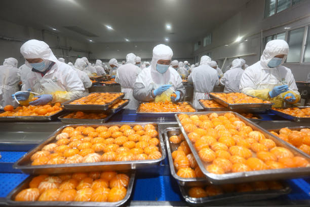 CHN: Food Factory In Huaibei