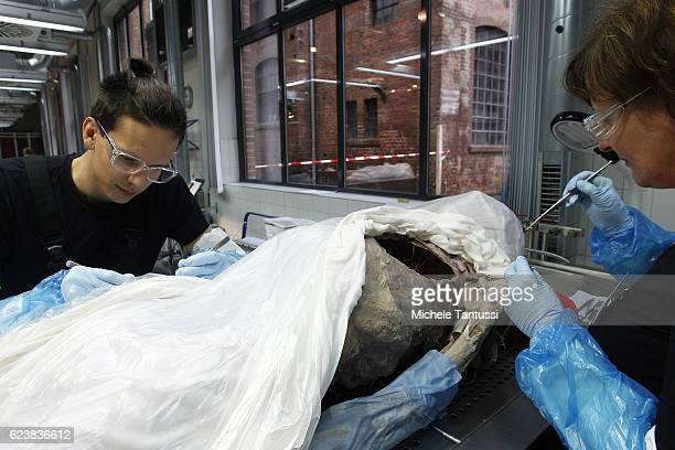 Employees work the plastination process on parts of human bodies during the 10th anniversary celebration of Gubener Plastinate GmbH the plastination...
