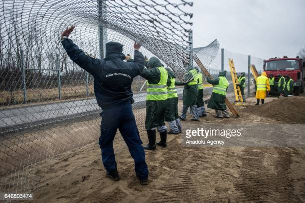 Employees work to build a second barrier for keeping out migrants between HungarianSerbian border in Budapest Hungary on March 01 2017 The second...