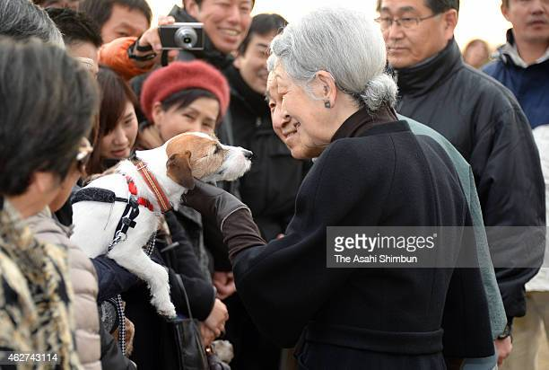 Empress Michiko pats a pet dog of a well-wisher while Emperor Akihito watches as they stroll around the Hayama Imperial Villa on February 4, 2015 in...