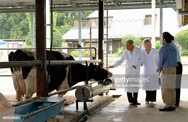 Empress Michiko talks to farmers while Emperor Akihito pets a milk cow as they visit a daily farmer during their stay at the Nasu Imperial Villa on...