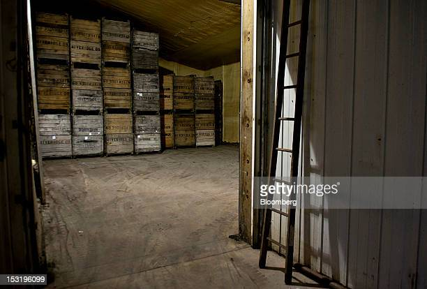 Empty apple crates sit in a storage room normally used to store apples in a temperature and atmospheric controlled environment for packing and...