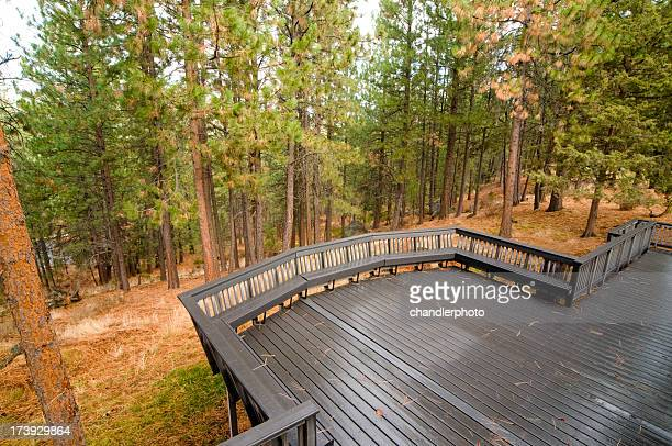 Empty back deck in the forest