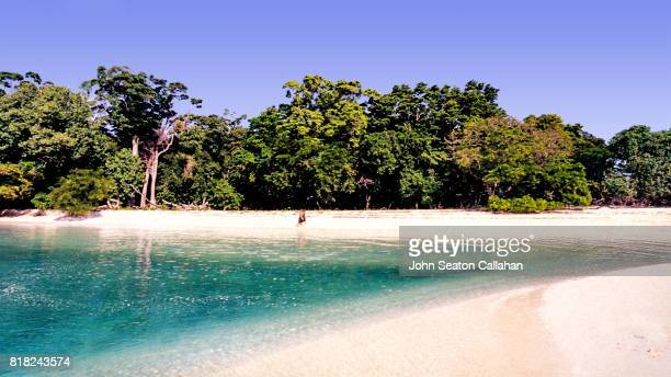 Empty Beach in the Andaman Islands