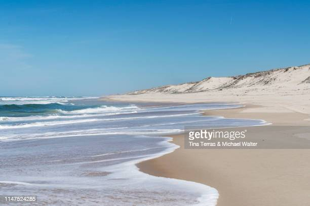 empty beach on the atlantic coast in france. - océan atlantique photos et images de collection
