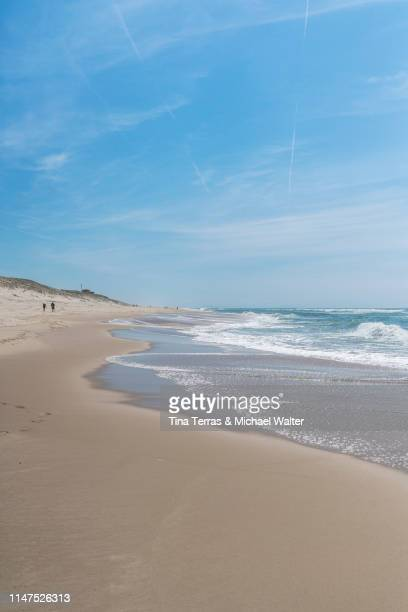empty beach on the atlantic coast in france. - uferpromenade stock-fotos und bilder