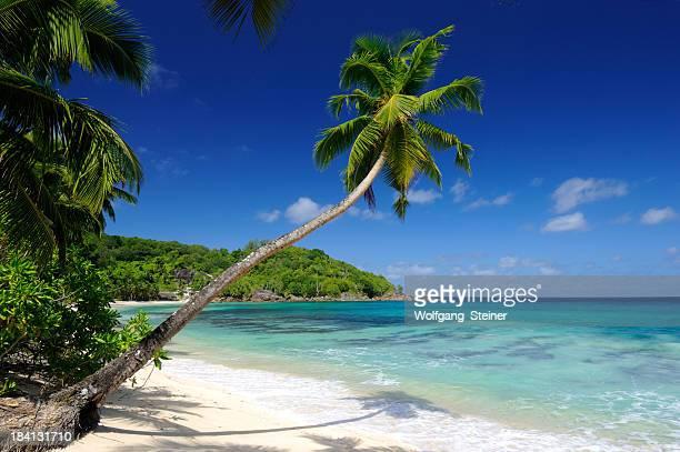 Empty beach on the Seychelles