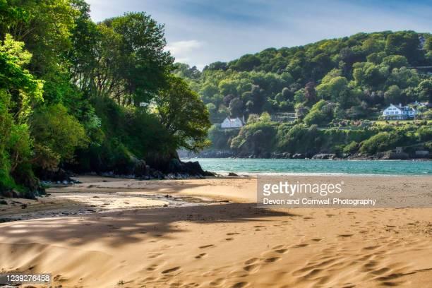 empty beach - デヴォン州 ストックフォトと画像