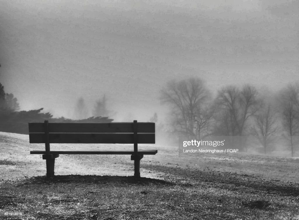 Empty bench and bare trees in winter : Stock Photo
