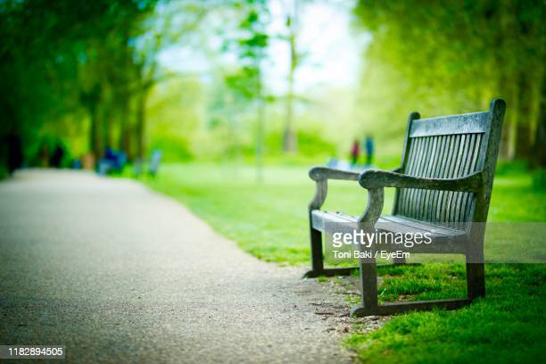 empty bench by footpath at park - park bench stock pictures, royalty-free photos & images