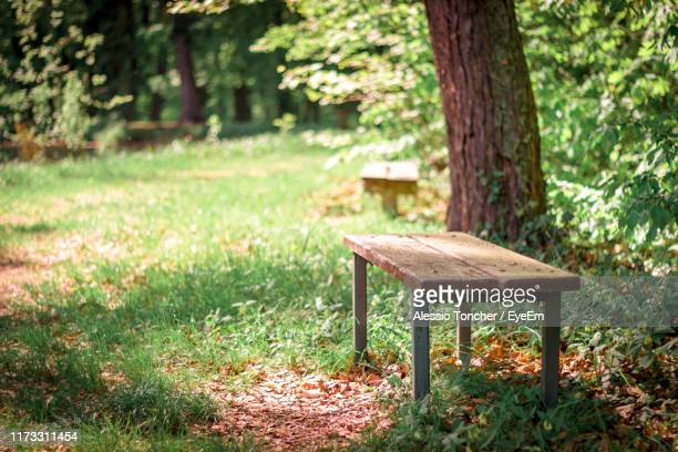 empty bench in park - bench stock pictures, royalty-free photos & images