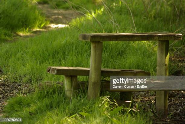 empty bench in park - curran stock pictures, royalty-free photos & images