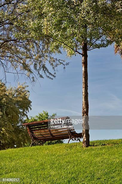 empty bench in the park - vicente méndez fotografías e imágenes de stock
