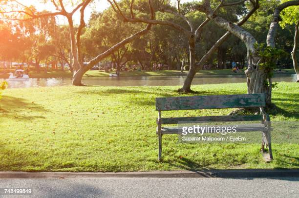 Empty Bench On Park During Sunny Day