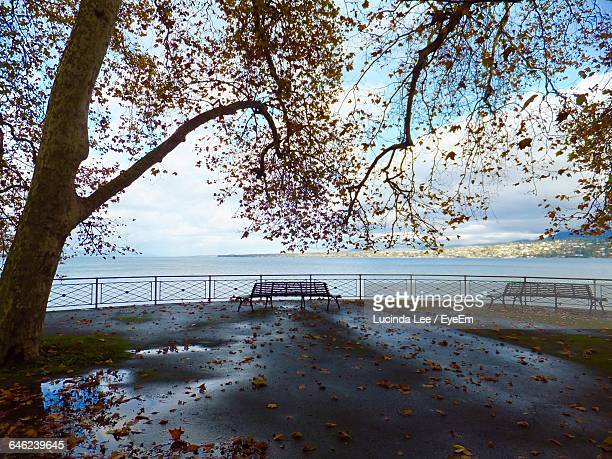 empty benches against calm sea - lucinda lee stock photos and pictures