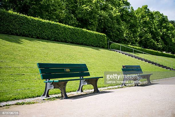 Empty Benches Against Trees On Footpath At Park