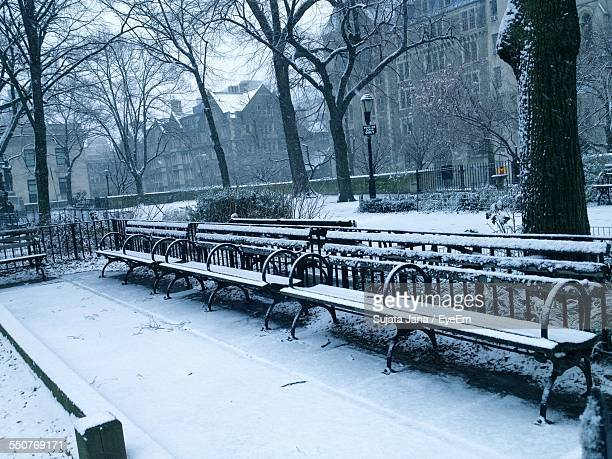 Empty Benches At Snowed Park