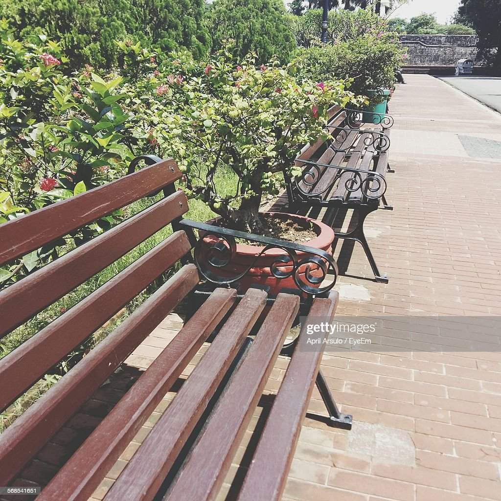 Empty Benches In Park : Stock Photo
