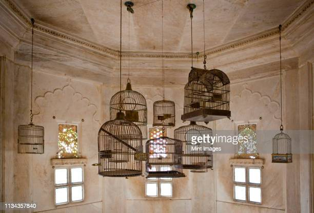 empty bird cages in the city palace - udaipur stock pictures, royalty-free photos & images