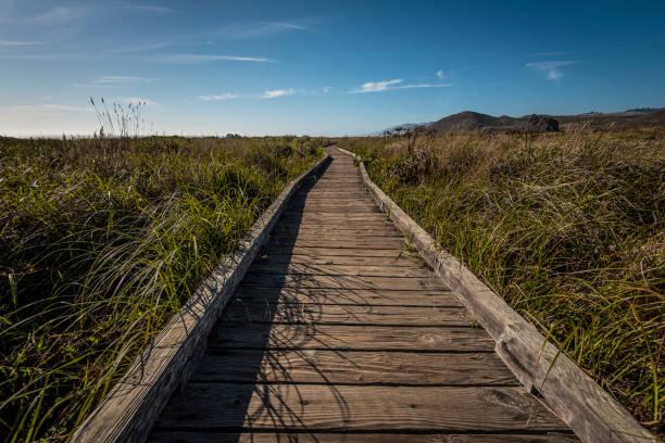 Empty boardwalk amidst field against sky,Kortum Trail,California,United States,USA