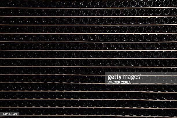 Empty bottles of wine in rack