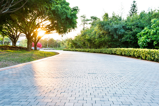 Empty brick road in the park 1025725906
