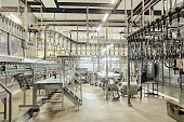 Empty butchering workshop poultry with overhead conveyor. Poultry processing plant line. Production of chicken meat.