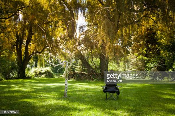 Empty camp chair in a beautiful yard