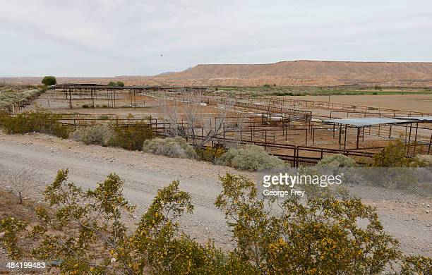 Empty cattle corrals sit along US 170 April 11 2014 west of Mesquite Nevada Bureau of Land Management officials are rounding up Cliven Bundy's cattle...